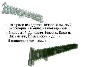 На Урале находятся Печоро-Илычский биосферный и еще10 заповедников На Урале нахо
