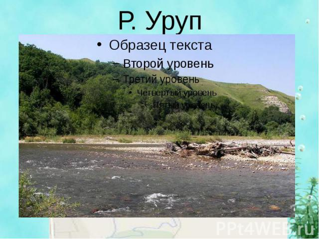 Р. Уруп
