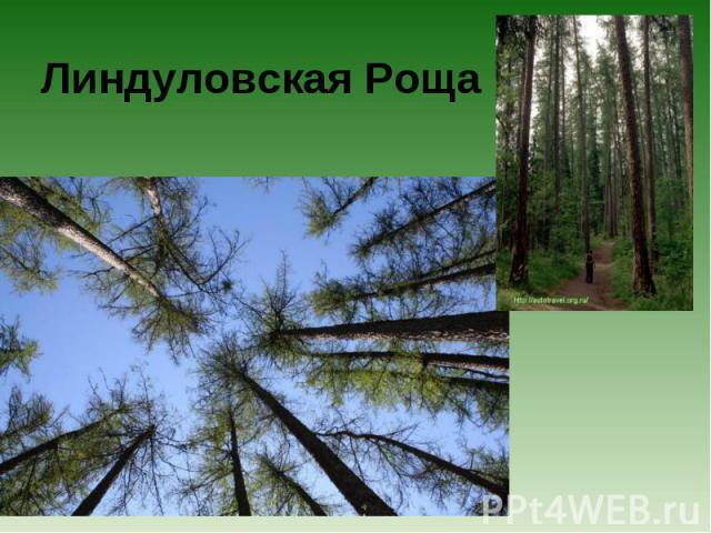 Линдуловская Роща
