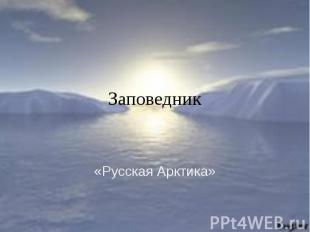 Заповедник «Русская Арктика»