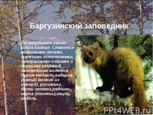 Он находится около озера Байкал. Славится кедровыми лесами, горячими источниками
