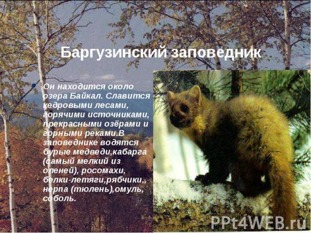 Он находится около озера Байкал. Славится кедровыми лесами, горячими источниками, прекрасными озёрами и горными реками.В заповеднике водятся бурые медведи,кабарга (самый мелкий из оленей), росомахи, белки-летяги,рябчики,, нерпа (тюлень),омуль, собол…