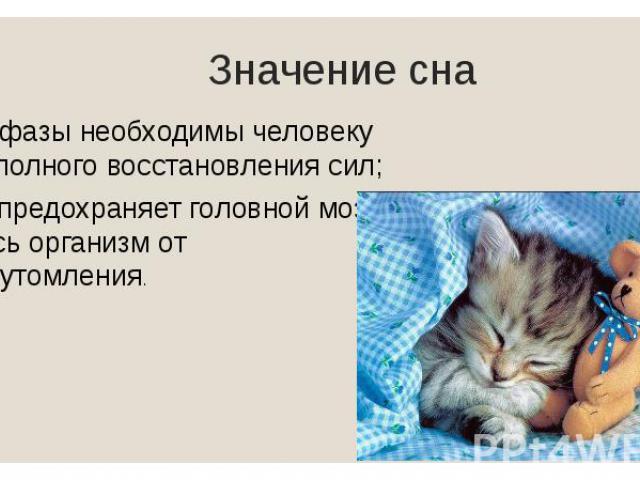 Значение сна Обе фазы необходимы человеку для полного восстановления сил; Сон предохраняет головной мозг и весь организм от переутомления.