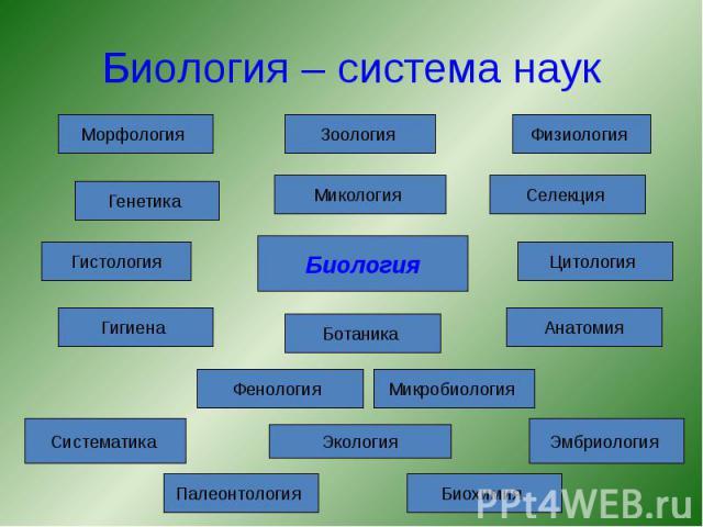 Биология – система наук