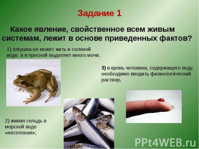 Задание 1 Какое явление, свойственное всем живым системам, лежит в основе приведенных фактов?