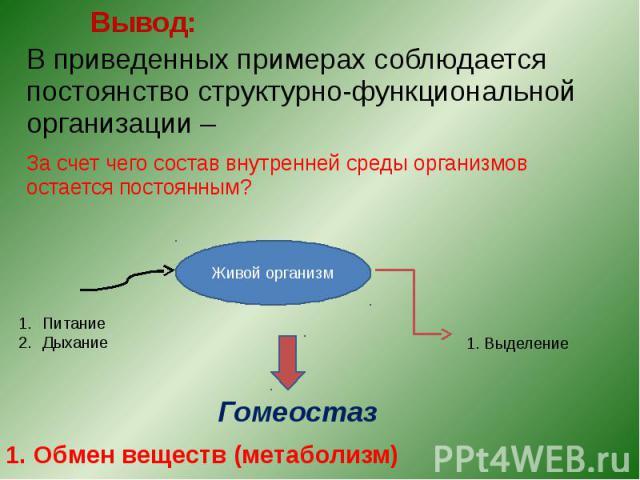 Вывод: В приведенных примерах соблюдается постоянство структурно-функциональной организации – За счет чего состав внутренней среды организмов остается постоянным?