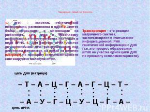 Транскрипция – первый этап биосинтеза