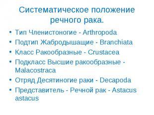 Тип Членистоногие - Arthropoda Тип Членистоногие - Arthropoda Подтип Жабродышащи