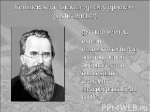 русский биолог, русский биолог, один из основоположников эволюционной эмбриологи