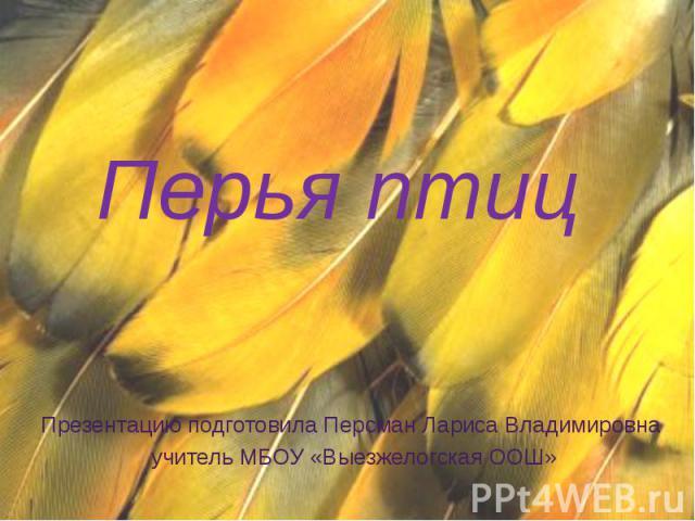 Перья птиц Презентацию подготовила Персман Лариса Владимировна учитель МБОУ «Выезжелогская ООШ»