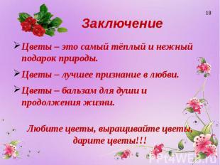 Заключение Цветы – это самый тёплый и нежный подарок природы. Цветы – лучшее при