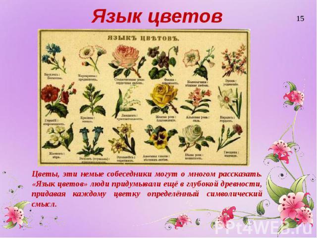 Язык цветов Цветы, эти немые собеседники могут о многом рассказать. «Язык цветов» люди придумывали ещё в глубокой древности, придавая каждому цветку определённый символический смысл.