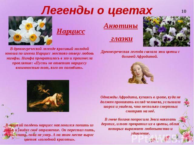 Легенды о цветах Нарцисс