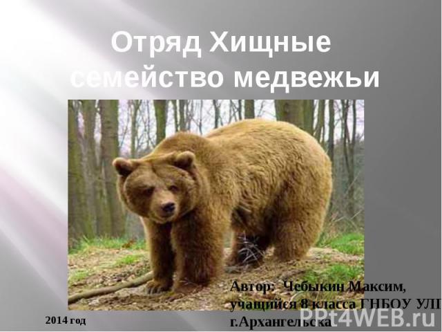 Отряд Хищные семейство медвежьи