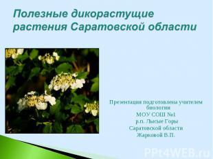 Презентация подготовлена учителем биологии Презентация подготовлена учителем био