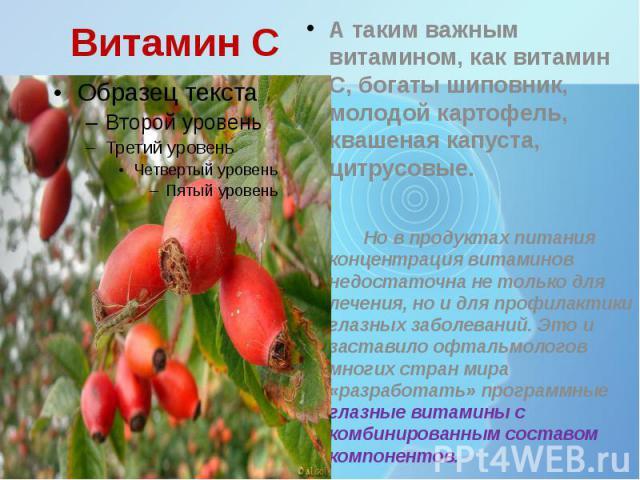 Витамин С А таким важным витамином, как витамин С, богаты шиповник, молодой картофель, квашеная капуста, цитрусовые. Но в продуктах питания концентрация витаминов недостаточна не только для лечения, но и для профилактики глазных заболеваний. Это и з…