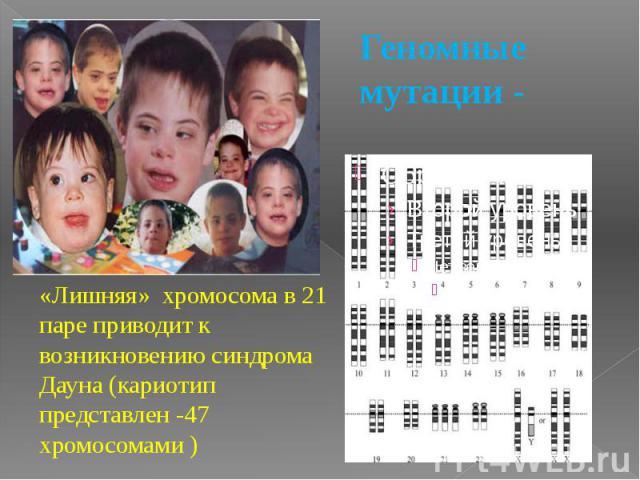 Геномные мутации -