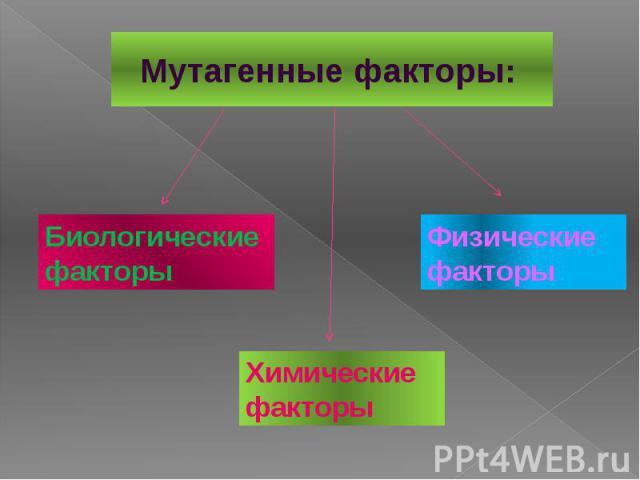 Мутагенные факторы: