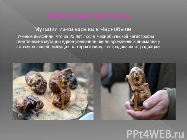 Физические мутагены Мутации из-за взрыва в Чернобыле Ученые выяснили, что за 25 лет после Чернобыльской катастрофы генетические мутации вдвое увеличили число врожденных аномалий у потомков людей, живущих на территориях, пострадавших от радиации
