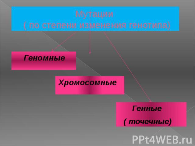 Мутации ( по степени изменения генотипа) Генные ( точечные)