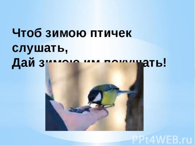 Чтоб зимою птичек слушать, Дай зимою им покушать!