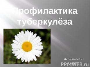Профилактика туберкулёза Митихина М.С. г. Курск