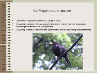 Существуют звуковые имитаторы хищных птиц. Существуют звуковые имитаторы хищных