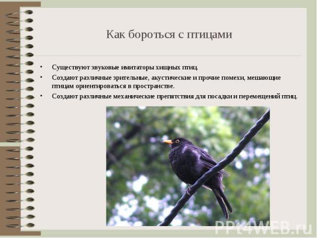 Существуют звуковые имитаторы хищных птиц. Существуют звуковые имитаторы хищных птиц. Создают различные зрительные, акустические и прочие помехи, мешающие птицам ориентироваться в пространстве. Создают различные механические препятствия для посадки …