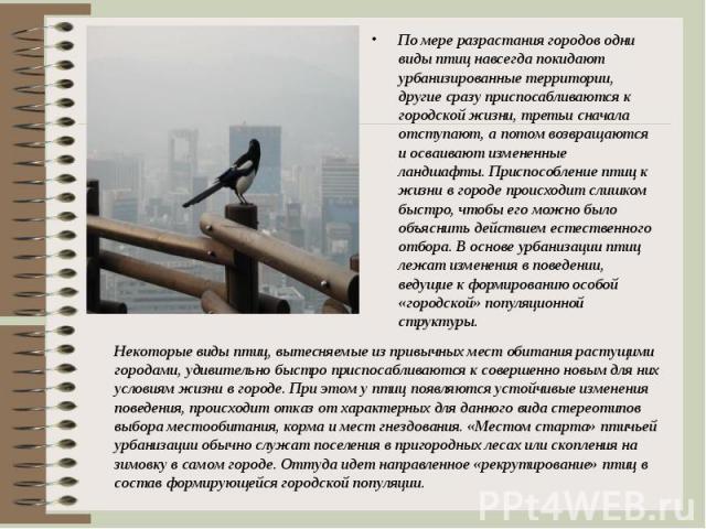 По мере разрастания городов одни виды птиц навсегда покидают урбанизированные территории, другие сразу приспосабливаются к городской жизни, третьи сначала отступают, а потом возвращаются и осваивают измененные ландшафты. Приспособление птиц к жизни …