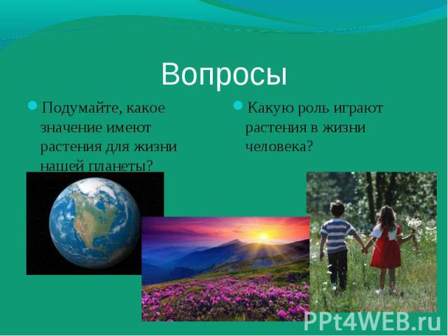 Подумайте, какое значение имеют растения для жизни нашей планеты? Подумайте, какое значение имеют растения для жизни нашей планеты?