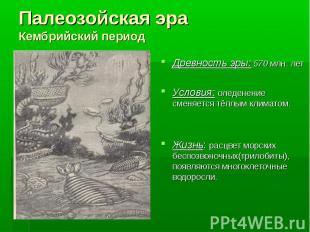 Древность эры: 570 млн. лет Древность эры: 570 млн. лет Условия: оледенение смен
