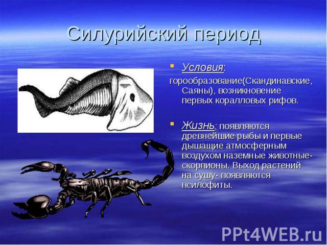 Условия: Условия: горообразование(Скандинавские, Саяны), возникновение первых коралловых рифов. Жизнь: появляются древнейшие рыбы и первые дышащие атмосферным воздухом наземные животные- скорпионы. Выход растений на сушу- появляются псилофиты.
