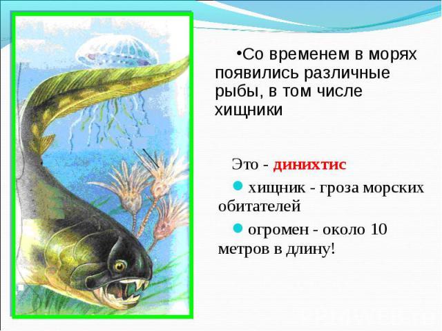 Это - динихтис Это - динихтис хищник - гроза морских обитателей огромен - около 10 метров в длину!