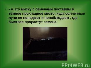 - А эту миску с семенами поставим в тёмное прохладное место, куда солнечные лучи