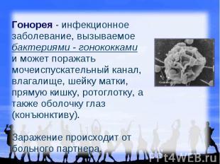Гонорея - инфекционное заболевание, вызываемое бактериями - гонококками и может