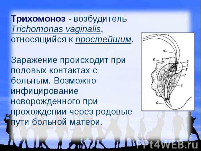Трихомоноз - возбудитель Trichomonas vaginalis, относящийся к простейшим. Заражение происходит при половых контактах с больным. Возможно инфицирование новорожденного при прохождении через родовые пути больной матери.