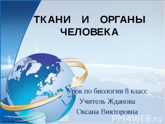 ТКАНИ И ОРГАНЫ ЧЕЛОВЕКА Урок по биологии 8 класс Учитель Жданова Оксана Викторовна