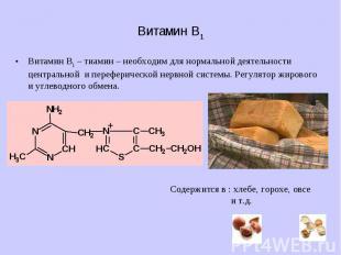 Витамин B1 Витамин B1 – тиамин – необходим для нормальной деятельности центральн