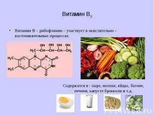 Витамин В2 Витамин В – рибофламин – участвует в окислительно - востонавительных