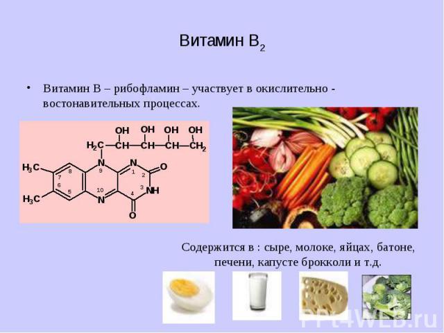 Витамин В2 Витамин В – рибофламин – участвует в окислительно - востонавительных процессах.