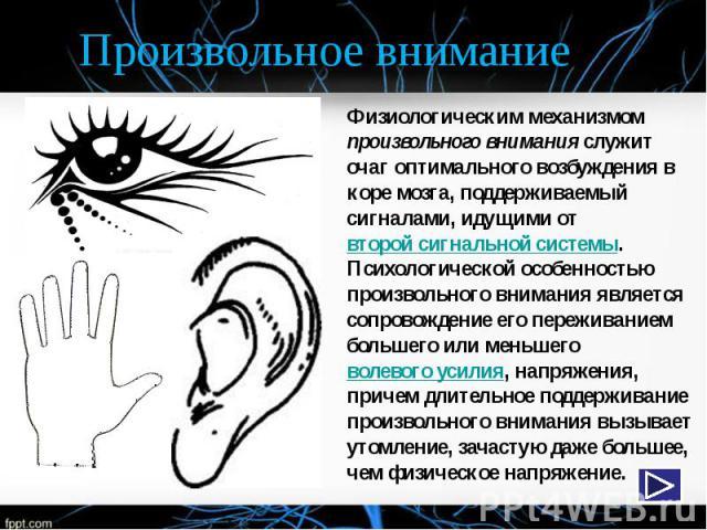 Произвольное внимание Физиологическим механизмом произвольного внимания служит очаг оптимального возбуждения в коре мозга, поддерживаемый сигналами, идущими от второй сигнальной системы. Психологической особенностью произвольного внимания является с…