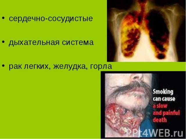 сердечно-сосудистые дыхательная система рак легких, желудка, горла