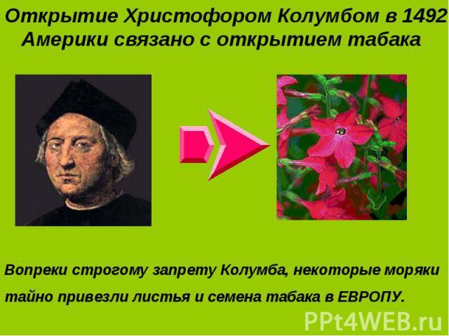 Открытие Христофором Колумбом в 1492 г. Америки связано с открытием табака Открытие Христофором Колумбом в 1492 г. Америки связано с открытием табака