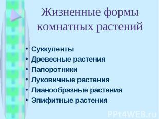 Суккуленты Суккуленты Древесные растения Папоротники Луковичные растения Лианооб