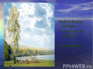 Люблю берёзу русскую, Люблю берёзу русскую, То светлую, то грустную… А. Прокофье