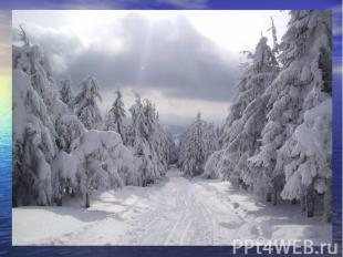 Когда это бывает? Снег на полях, Лёд на реках, Вьюга гуляет. Когда это бывает? (
