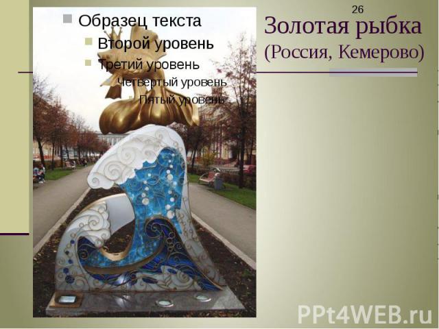 Золотая рыбка (Россия, Кемерово)