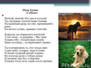 Иван Бунин «Собака» Иван Бунин «Собака» Мечтай, мечтай. Все уже и тусклей Ты смо