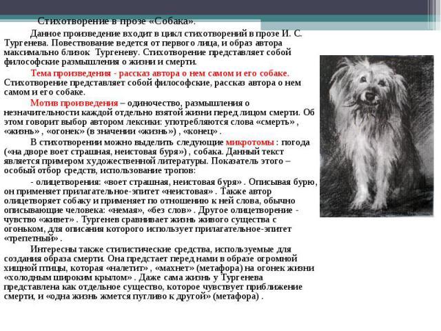 Закиева, вполне в прозе о собаке использовать