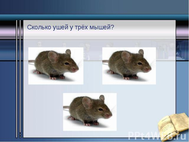 Сколько ушей у трёх мышей? Сколько ушей у трёх мышей?